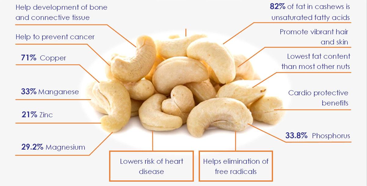http://bismicashewcompany.in/wp-content/uploads/2017/07/cashew.jpg